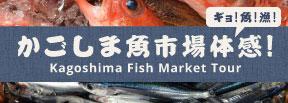 かごしま魚市場体感|鹿児島・ホテル・温泉