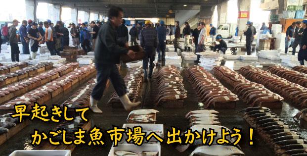 かごしま魚市場ツアー